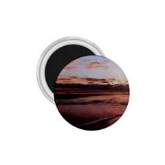 Stunning Sunset On The Beach 3 1 75  Magnets