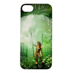 The Gate In The Magical World Apple Iphone 5s Hardshell Case