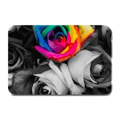 Blach,white Splash Roses Plate Mats