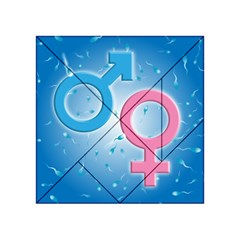 Sperm and Gender Symbols  Acrylic Tangram Puzzle (4  x 4 )