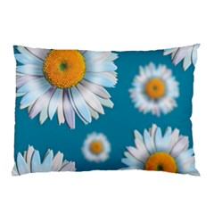 Floating Daisies Pillow Cases
