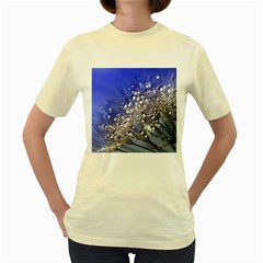 Dandelion 2015 0704 Women s Yellow T Shirt