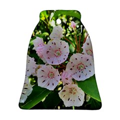 Amazing Garden Flowers 35 Bell Ornament (2 Sides)