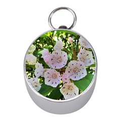 Amazing Garden Flowers 35 Mini Silver Compasses