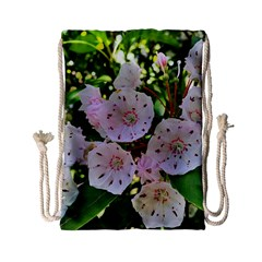 Amazing Garden Flowers 35 Drawstring Bag (small)