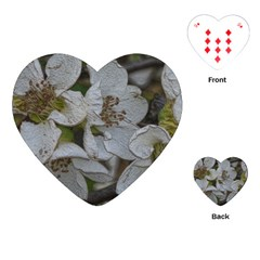 Amazing Garden Flowers 32 Playing Cards (Heart)