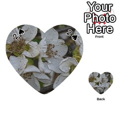 Amazing Garden Flowers 32 Playing Cards 54 (Heart)