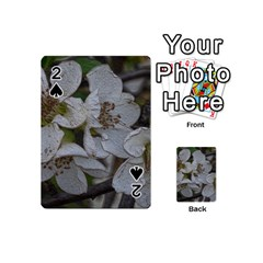 Amazing Garden Flowers 32 Playing Cards 54 (Mini)