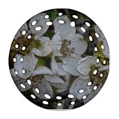Amazing Garden Flowers 32 Ornament (Round Filigree)