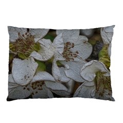 Amazing Garden Flowers 32 Pillow Cases (two Sides)