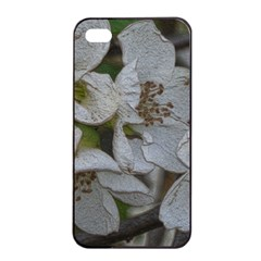 Amazing Garden Flowers 32 Apple iPhone 4/4s Seamless Case (Black)