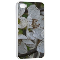 Amazing Garden Flowers 32 Apple Iphone 4/4s Seamless Case (white)