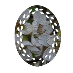 Amazing Garden Flowers 32 Oval Filigree Ornament (2 Side)