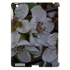 Amazing Garden Flowers 32 Apple Ipad 3/4 Hardshell Case (compatible With Smart Cover)