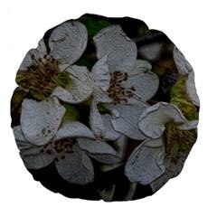 Amazing Garden Flowers 32 Large 18  Premium Flano Round Cushions