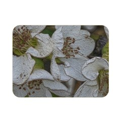 Amazing Garden Flowers 32 Double Sided Flano Blanket (Mini)