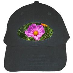 Amazing Garden Flowers 24 Black Cap