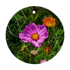 Amazing Garden Flowers 24 Ornament (round)