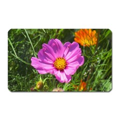 Amazing Garden Flowers 24 Magnet (rectangular)