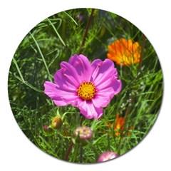 Amazing Garden Flowers 24 Magnet 5  (round)