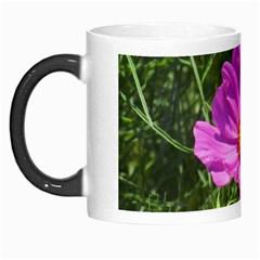 Amazing Garden Flowers 24 Morph Mugs