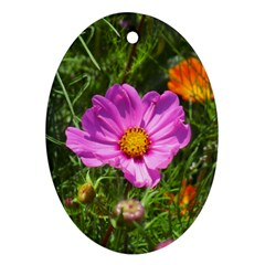 Amazing Garden Flowers 24 Oval Ornament (two Sides)
