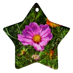 Amazing Garden Flowers 24 Star Ornament (two Sides)