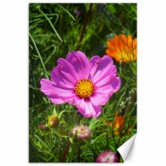 Amazing Garden Flowers 24 Canvas 20  X 30