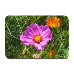 Amazing Garden Flowers 24 Plate Mats