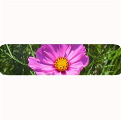 Amazing Garden Flowers 24 Large Bar Mats