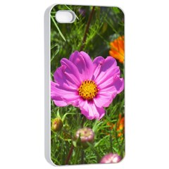 Amazing Garden Flowers 24 Apple Iphone 4/4s Seamless Case (white)