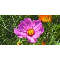Amazing Garden Flowers 24 You Are Invited 3d Greeting Card (8x4)