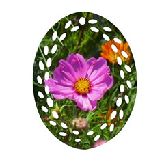 Amazing Garden Flowers 24 Ornament (Oval Filigree)