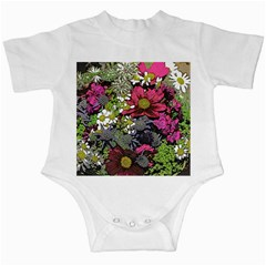 Amazing Garden Flowers 21 Infant Creepers