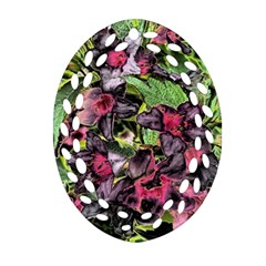 Amazing Garden Flowers 33 Ornament (Oval Filigree)