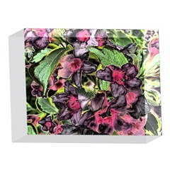 Amazing Garden Flowers 33 5 x 7  Acrylic Photo Blocks
