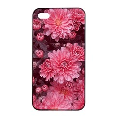 Awesome Flowers Red Apple iPhone 4/4s Seamless Case (Black)