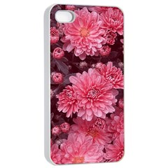 Awesome Flowers Red Apple Iphone 4/4s Seamless Case (white)