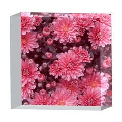 Awesome Flowers Red 5  x 5  Acrylic Photo Blocks