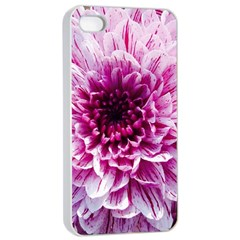 Wonderful Flowers Apple iPhone 4/4s Seamless Case (White)
