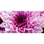 Wonderful Flowers Merry Xmas 3D Greeting Card (8x4)  Front