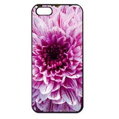 Wonderful Flowers Apple Iphone 5 Seamless Case (black)