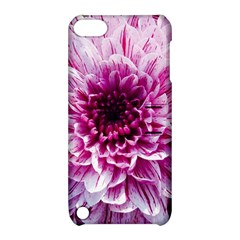 Wonderful Flowers Apple Ipod Touch 5 Hardshell Case With Stand