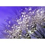 Dandelion 2015 0705 Circle 3D Greeting Card (7x5)  Front
