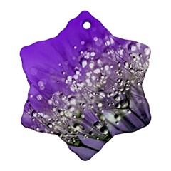 Dandelion 2015 0706 Ornament (Snowflake)