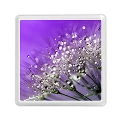 Dandelion 2015 0706 Memory Card Reader (Square)