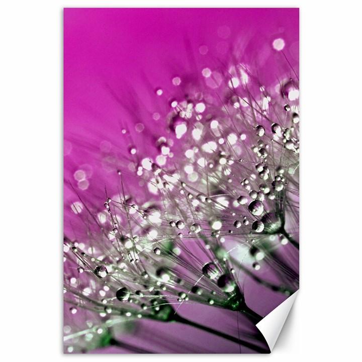 Dandelion 2015 0708 Canvas 12  x 18