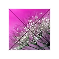 Dandelion 2015 0708 Acrylic Tangram Puzzle (4  x 4 )