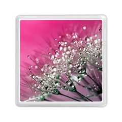 Dandelion 2015 0709 Memory Card Reader (Square)
