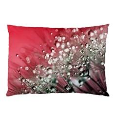 Dandelion 2015 0710 Pillow Cases